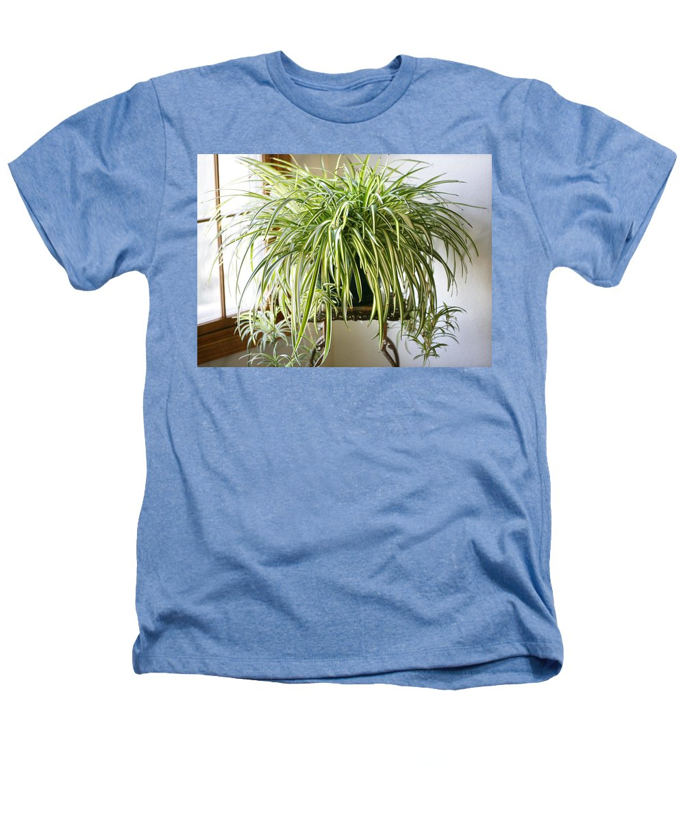 Spider Plant Heathers T-Shirt featuring the photograph Spider Plant by Marilyn Hunt