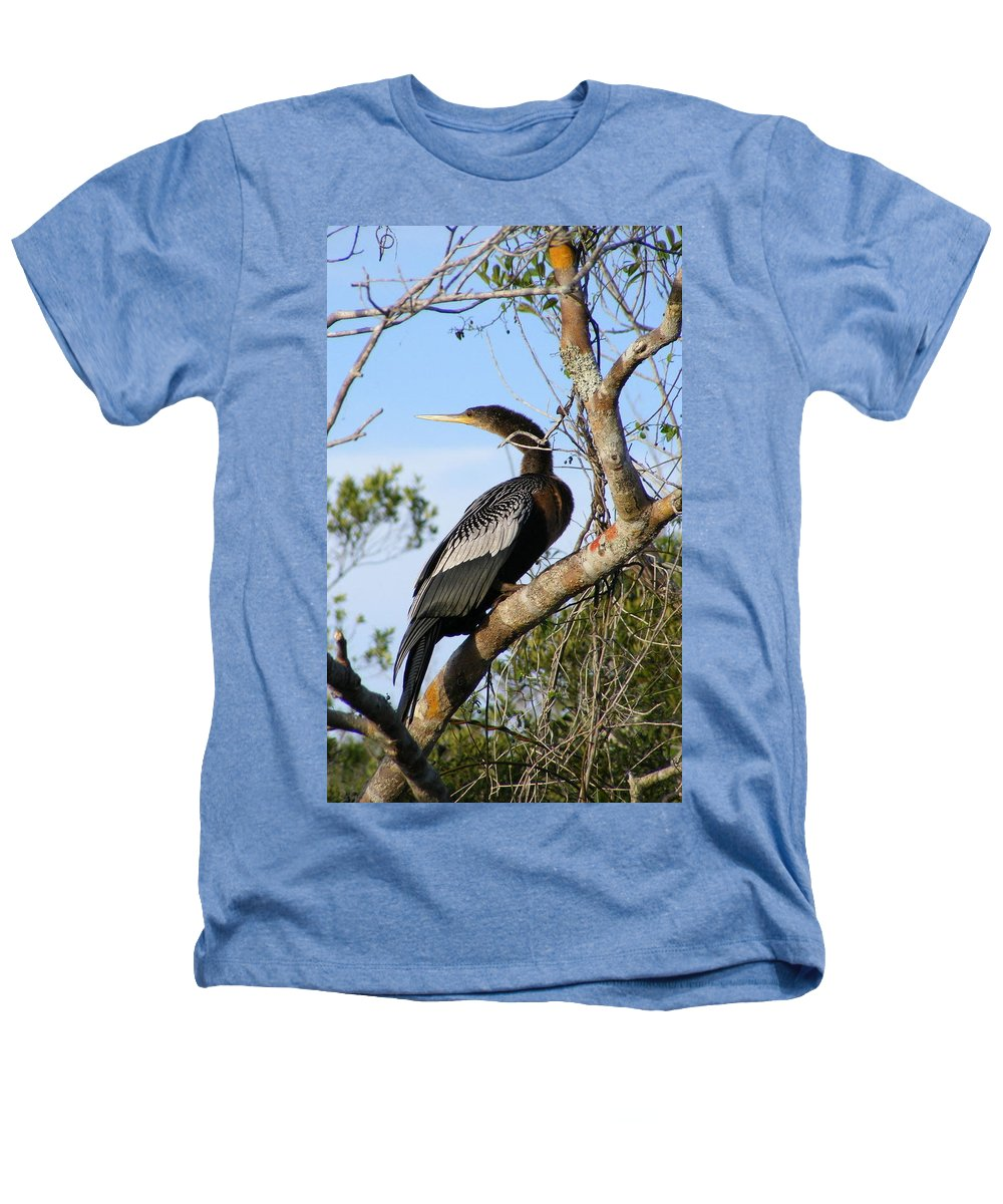 Bird Heathers T-Shirt featuring the photograph Strike A Pose by Ed Smith
