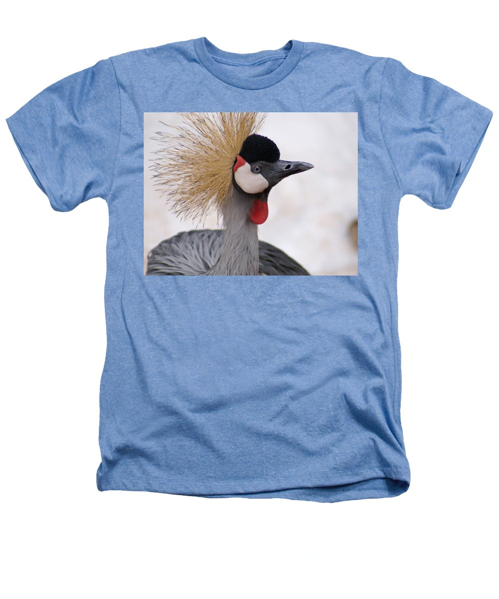 Crane Heathers T-Shirt featuring the photograph The Headress Crowned Crane by Heather Coen