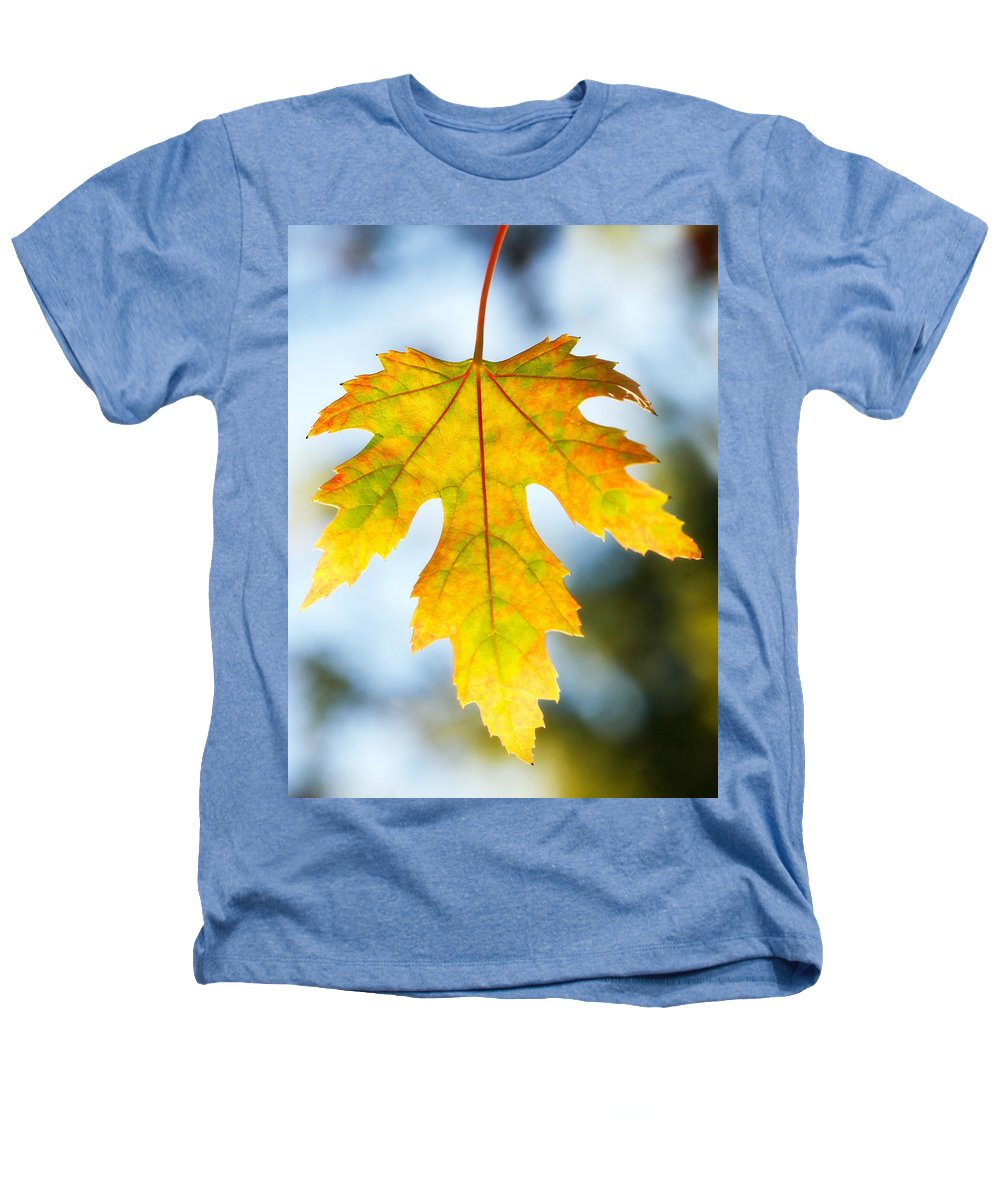 Maple Heathers T-Shirt featuring the photograph The Maple Leaf by Marilyn Hunt