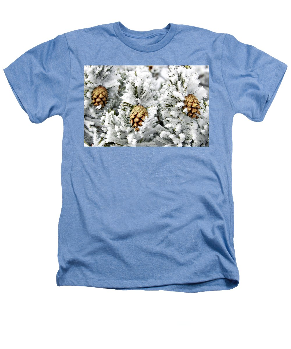 Frosty Heathers T-Shirt featuring the photograph Three Pinecones by Marilyn Hunt