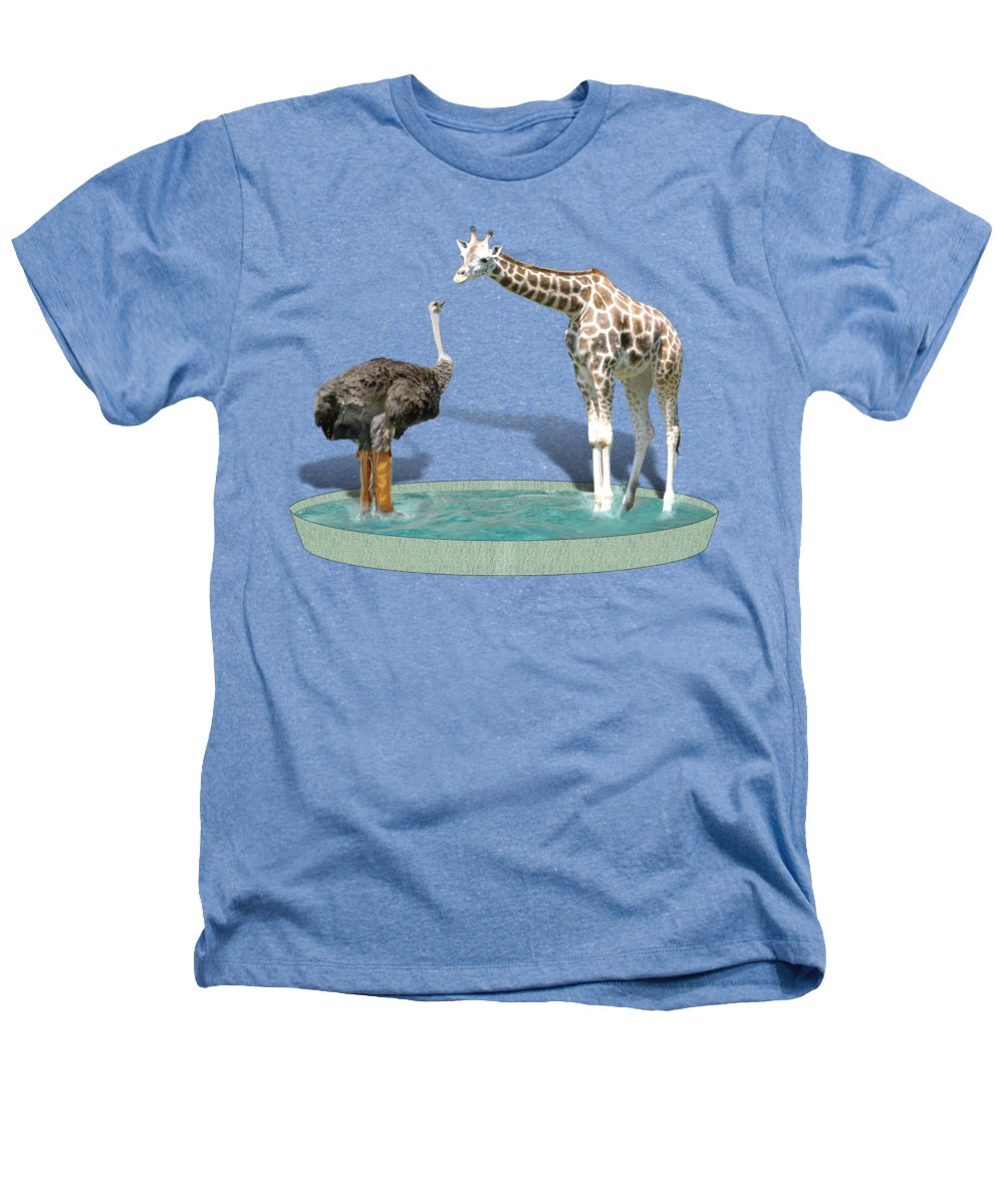 Ostrich Heathers T-Shirts