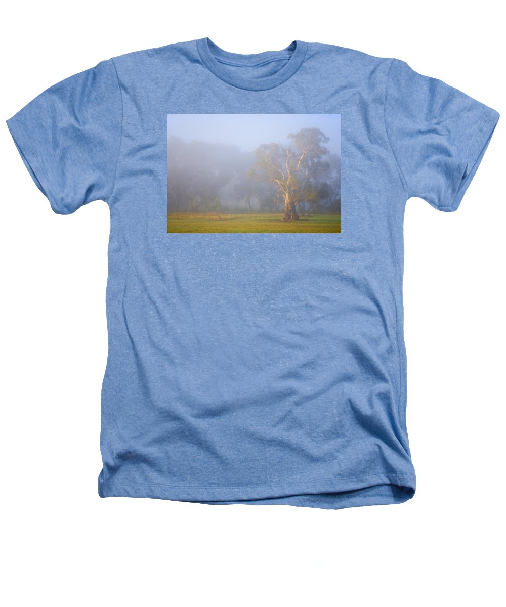 Tree Heathers T-Shirt featuring the photograph White Gum Morning by Mike Dawson