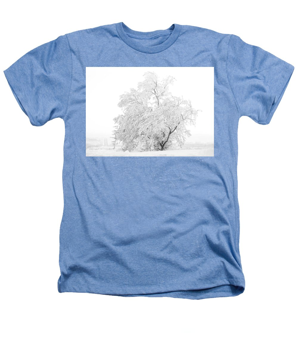 Snow Heathers T-Shirt featuring the photograph White On White by Marilyn Hunt
