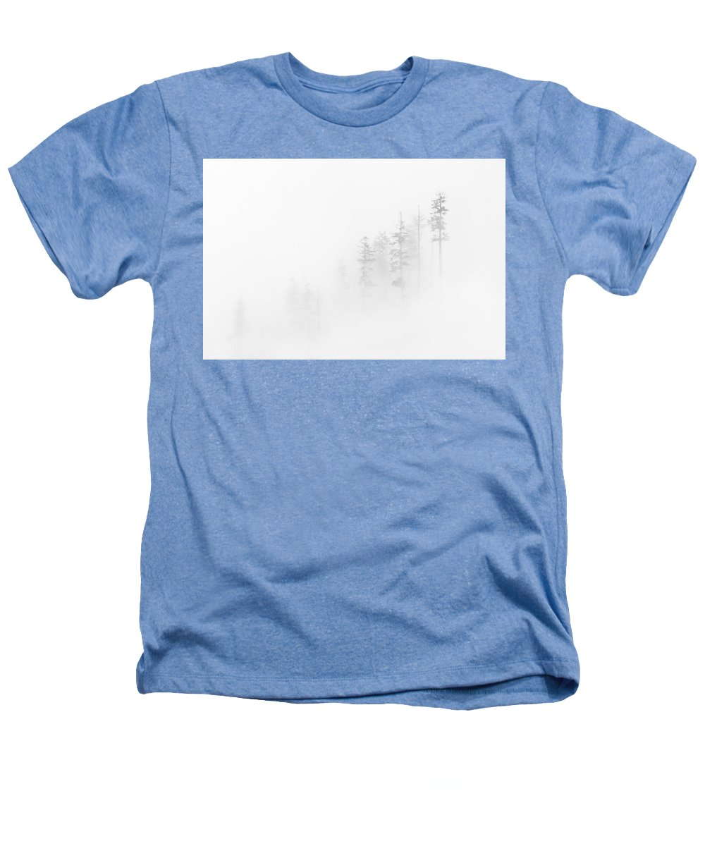 Winter Heathers T-Shirt featuring the photograph Winter Veil by Mike Dawson