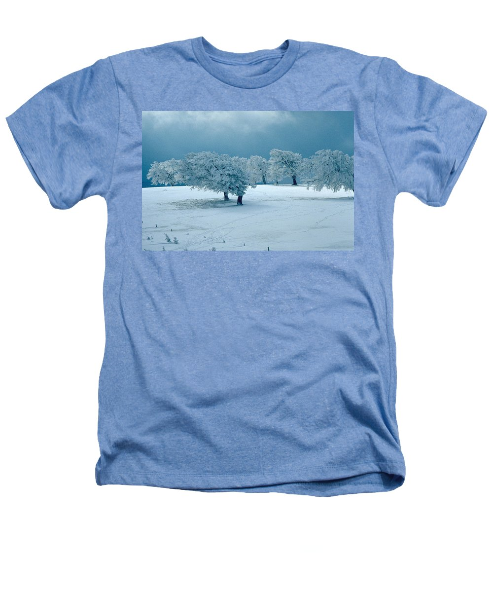 Winter Heathers T-Shirt featuring the photograph Winter Wonderland by Flavia Westerwelle