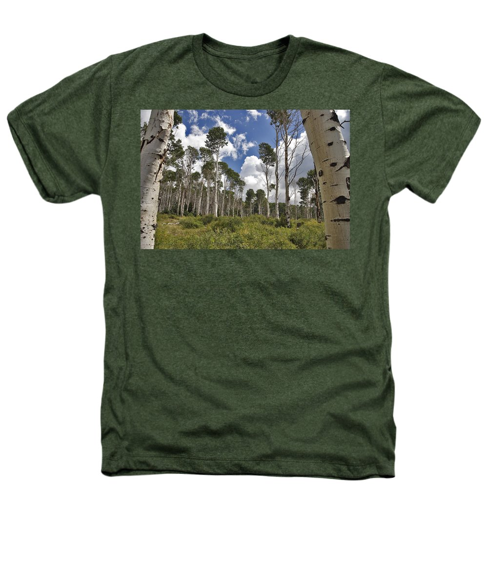 3scape Photos Heathers T-Shirt featuring the photograph Aspen Grove by Adam Romanowicz