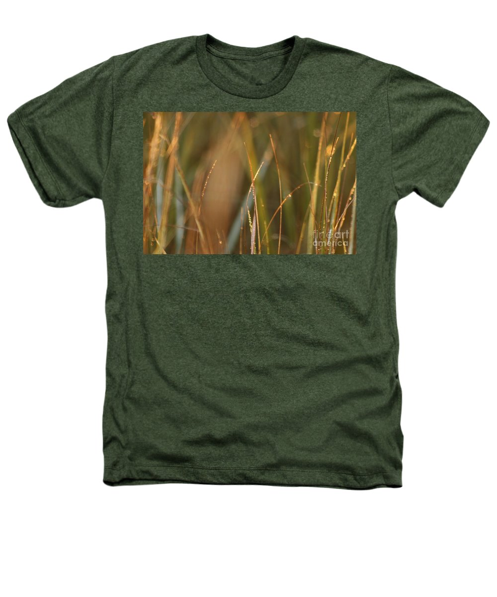Dew Heathers T-Shirt featuring the photograph Dewy Grasses by Nadine Rippelmeyer