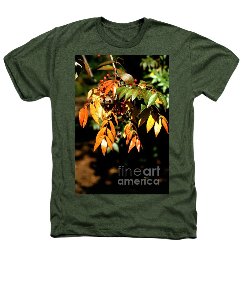 Fall Color Heathers T-Shirt featuring the photograph Fall Leaves by Kathy McClure