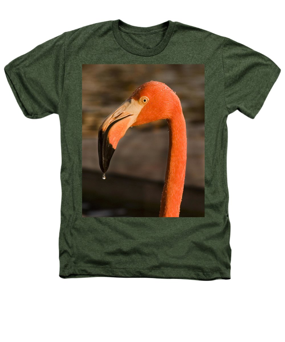 3scape Heathers T-Shirt featuring the photograph Flamingo by Adam Romanowicz