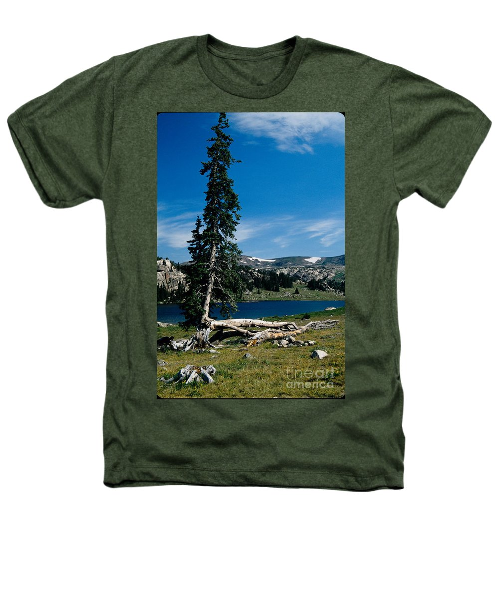 Mountains Heathers T-Shirt featuring the photograph Lone Tree At Pass by Kathy McClure