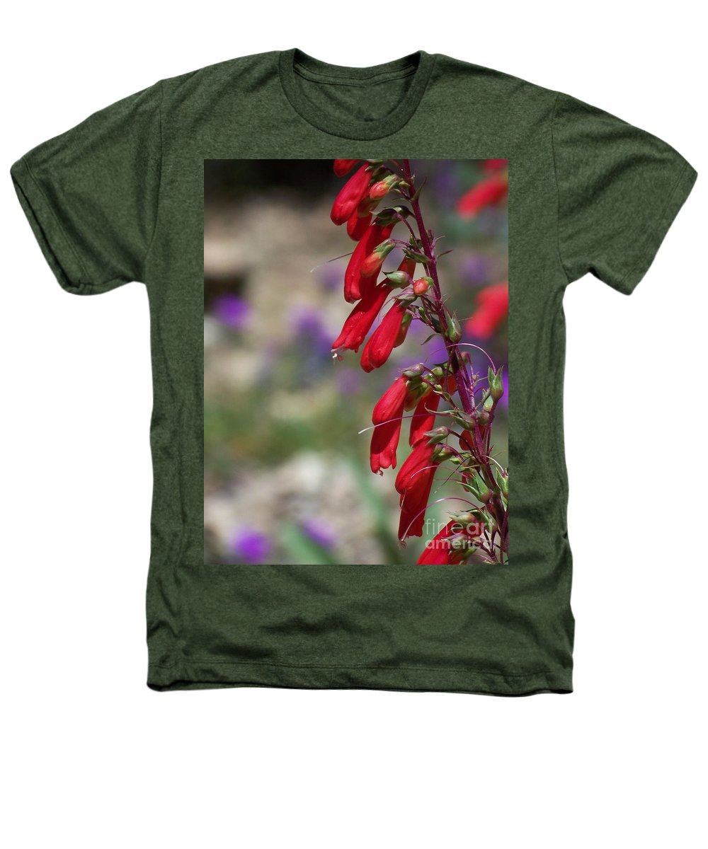 Flowers Heathers T-Shirt featuring the photograph Penstemon by Kathy McClure