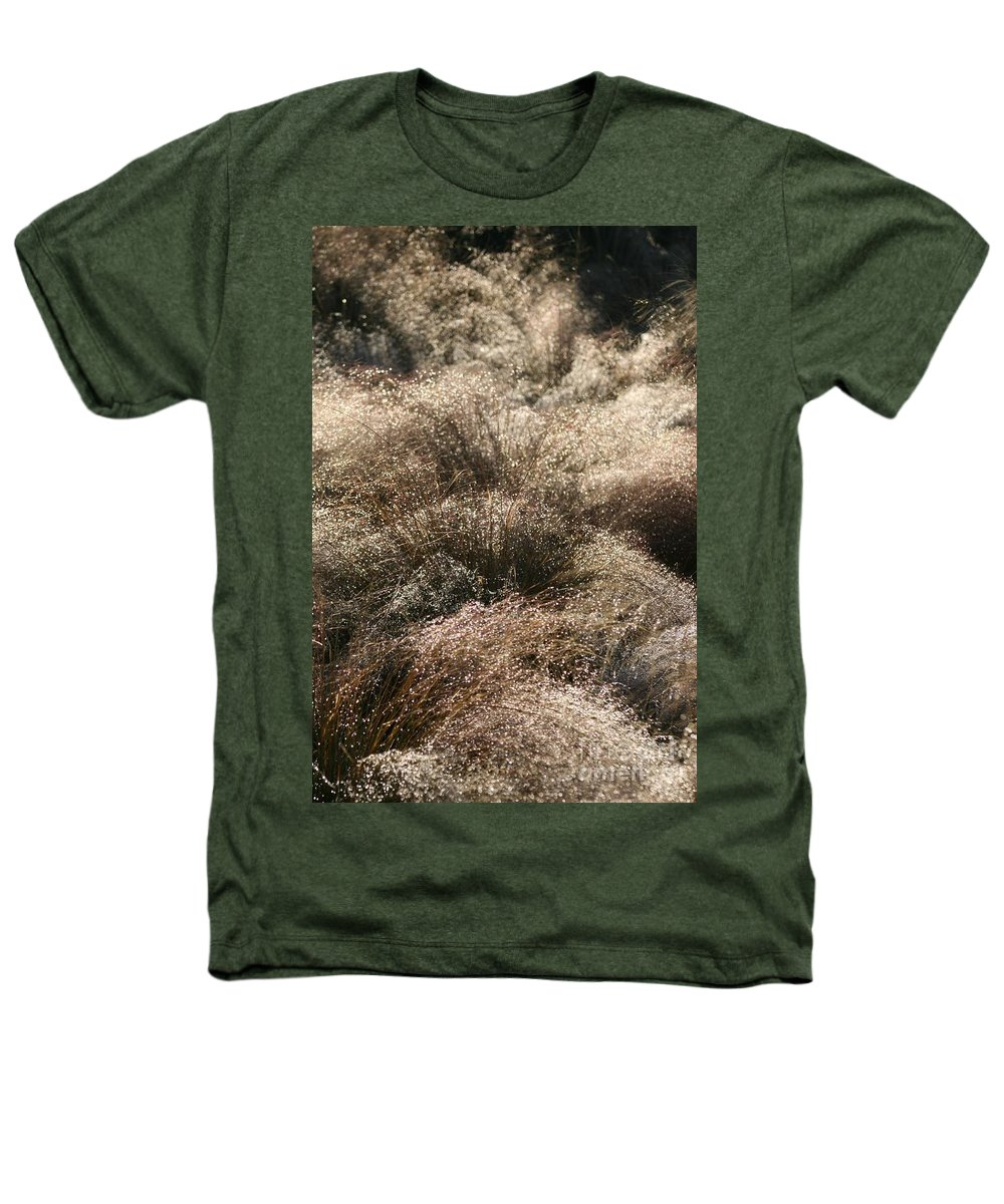 Grasses Heathers T-Shirt featuring the photograph Sparkling Grasses by Nadine Rippelmeyer