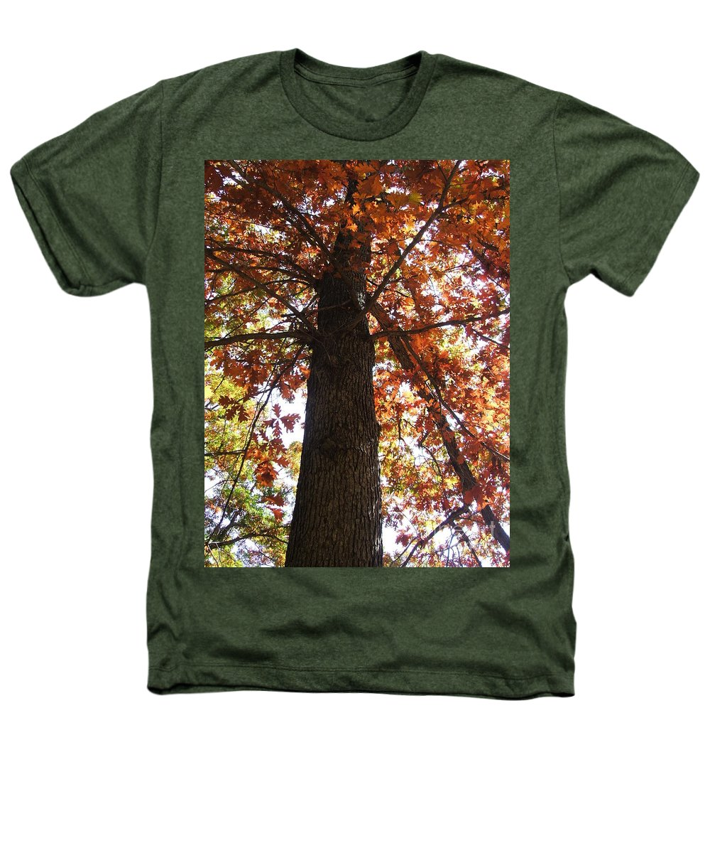 Tree Heathers T-Shirt featuring the photograph Up Fall by Minding My Visions by Adri and Ray