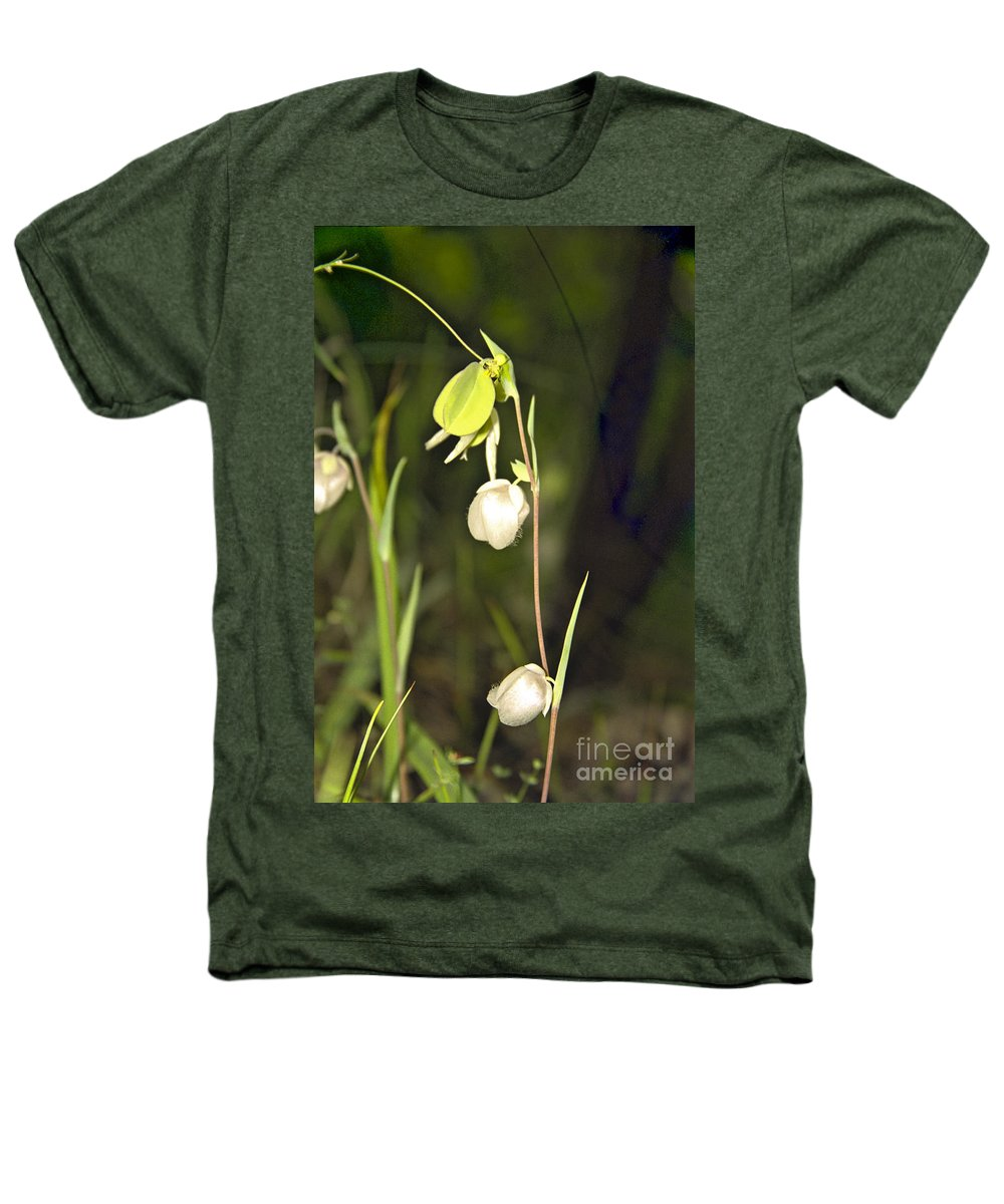 Wildflowers; Globes; Nature; Green; White Heathers T-Shirt featuring the photograph Whispers by Kathy McClure