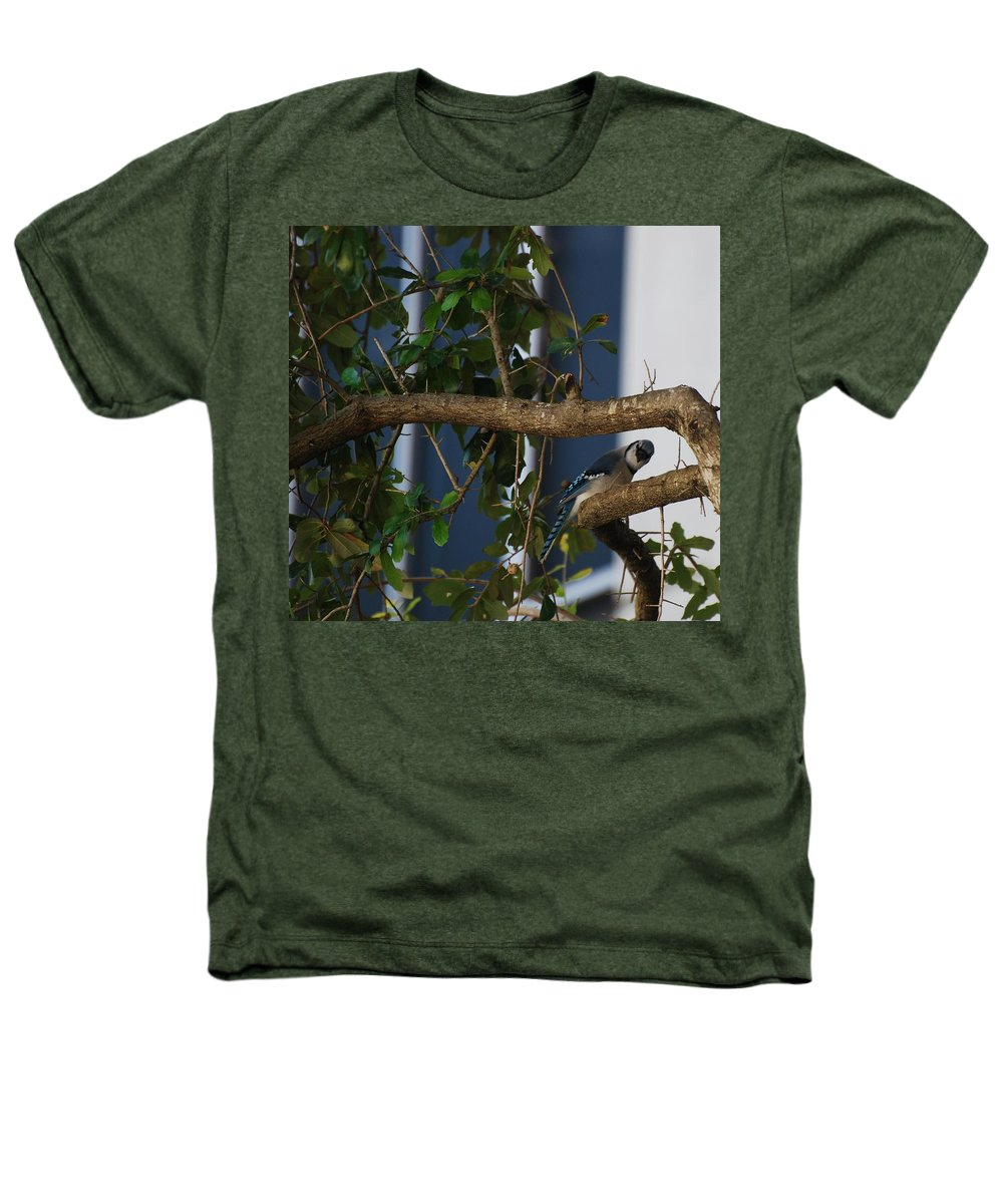 Birds Heathers T-Shirt featuring the photograph Blue Bird by Rob Hans