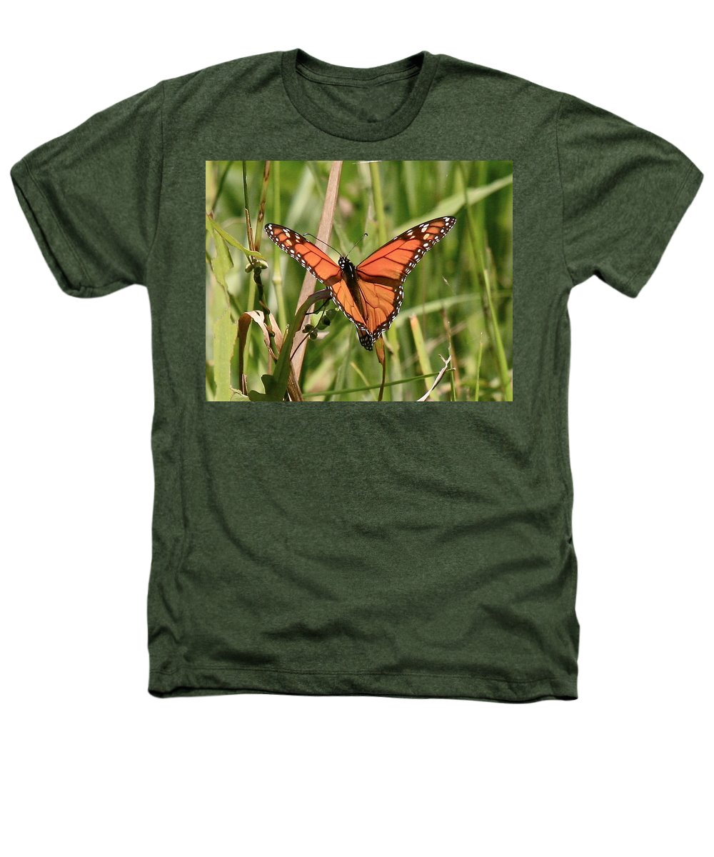 Butterfly Heathers T-Shirt featuring the photograph Drying My Wings by Robert Pearson