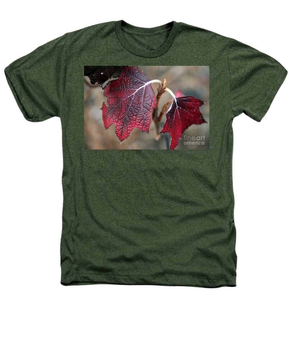 Fall Heathers T-Shirt featuring the photograph Leaves by Amanda Barcon