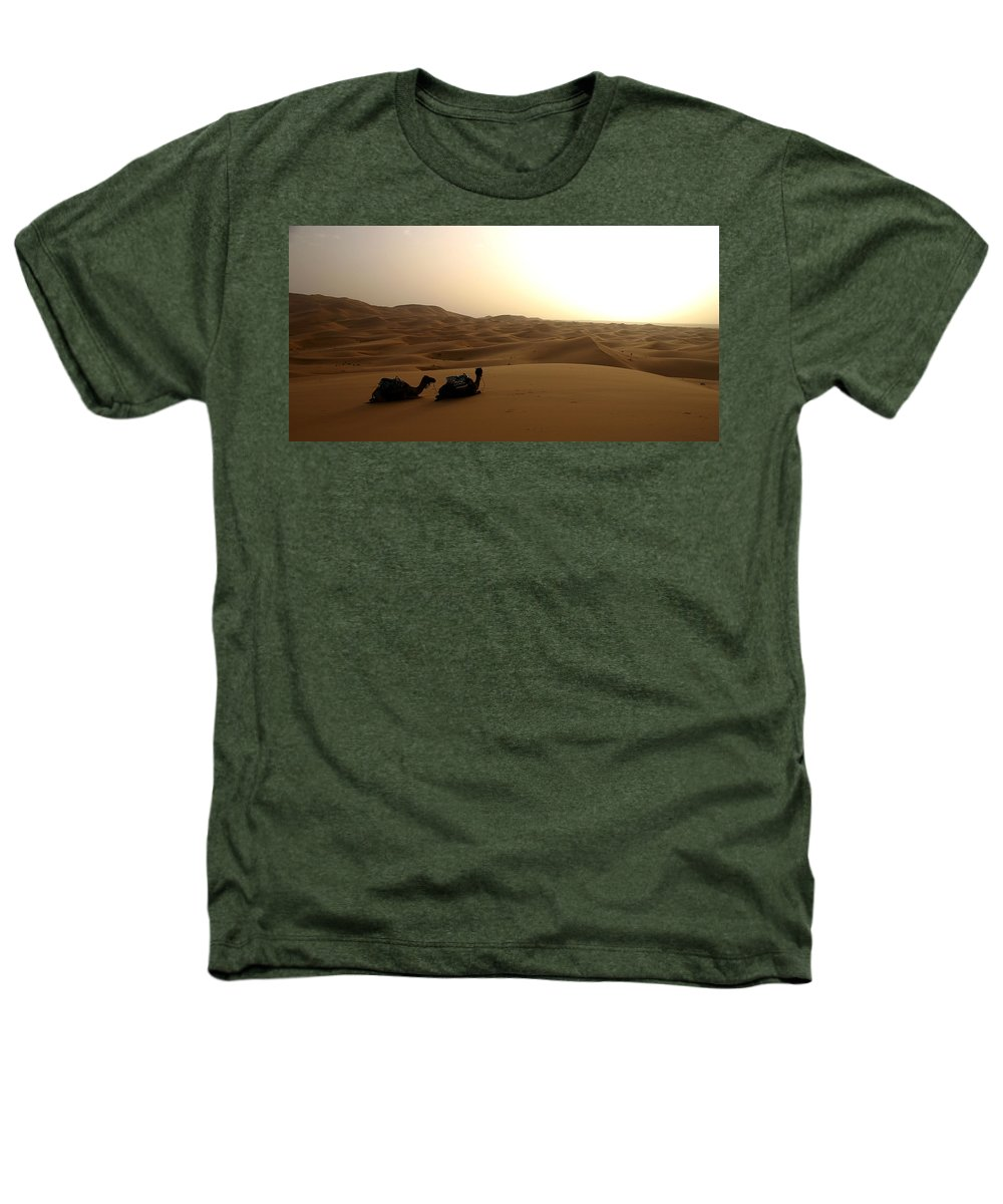 Camel Heathers T-Shirt featuring the photograph Two Camels At Sunset In The Desert by Ralph A Ledergerber-Photography