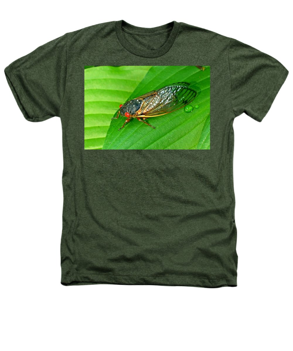 17 Heathers T-Shirt featuring the photograph 17 Year Periodical Cicada by Douglas Barnett