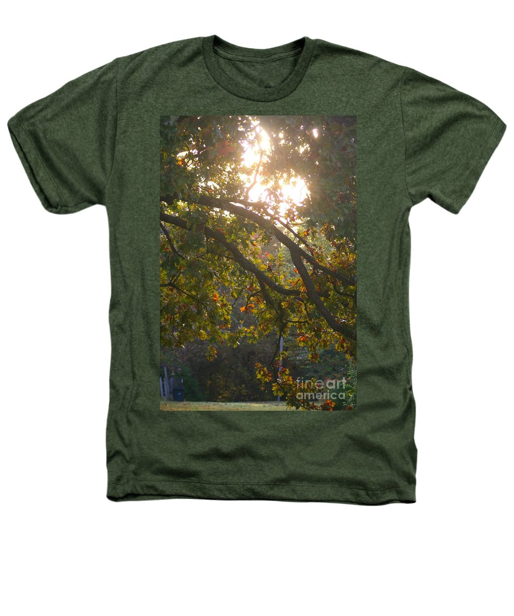 Autumn Heathers T-Shirt featuring the photograph Autumn Morning Glow by Nadine Rippelmeyer