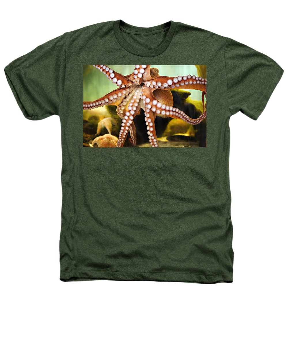 Octopus Heathers T-Shirt featuring the photograph Beautiful Octopus by Marilyn Hunt