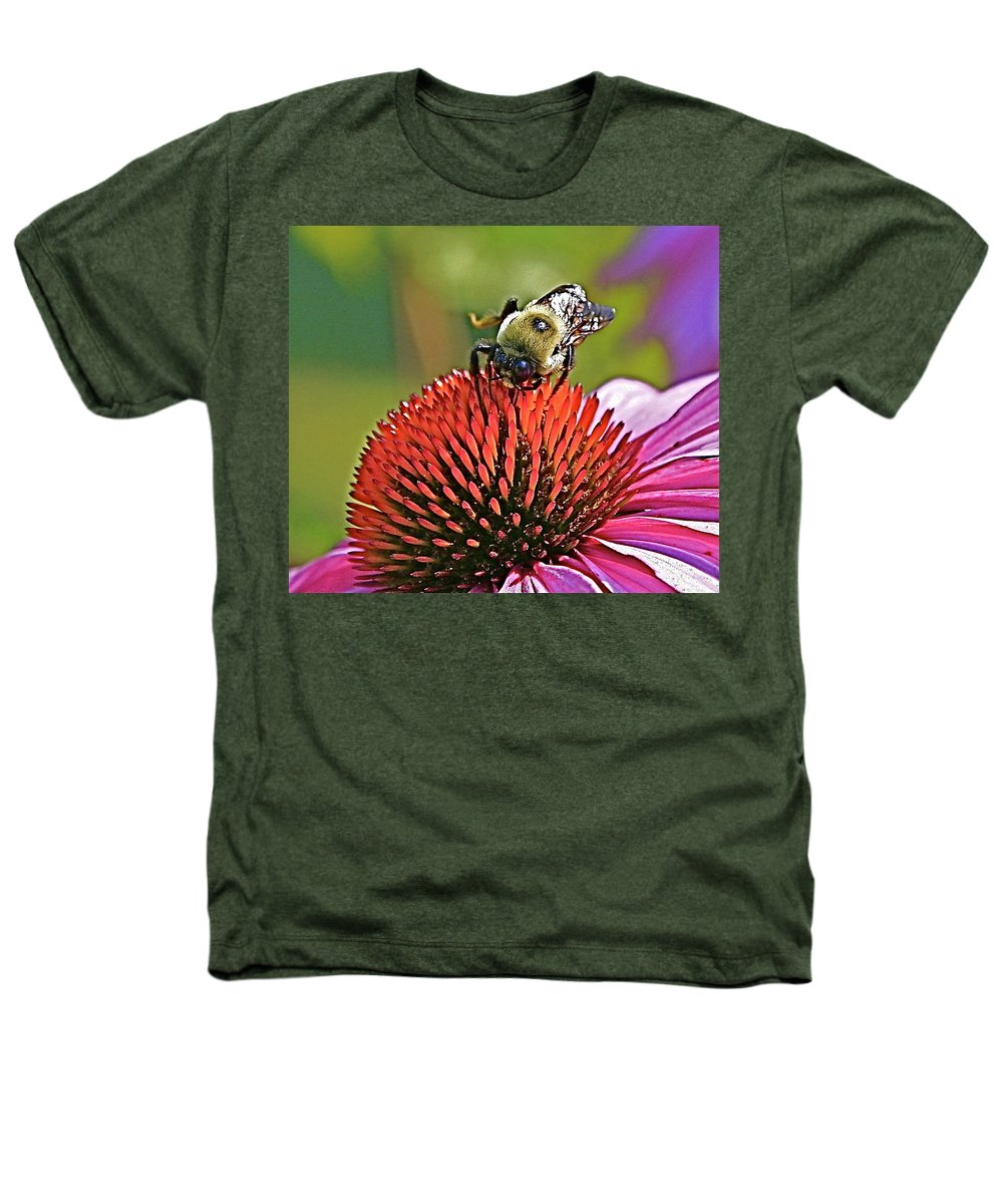 Bee Heathers T-Shirt featuring the photograph Beware by Robert Pearson