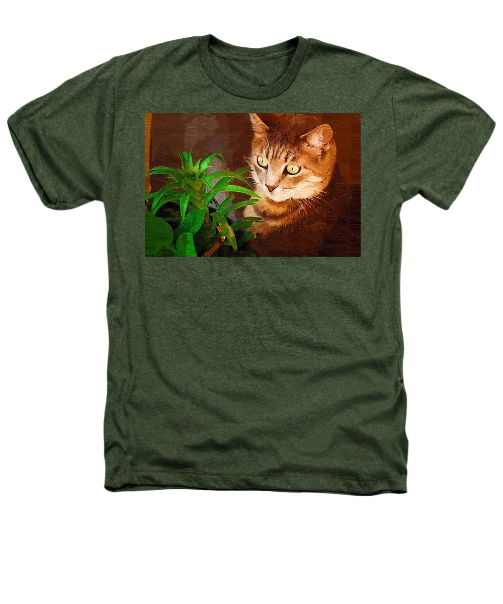 Cat Heathers T-Shirt featuring the photograph Bink by Donna Bentley