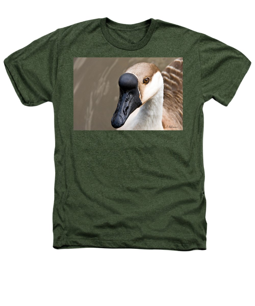 Chinese Brown Goose Heathers T-Shirt featuring the photograph Brown Eye by Christopher Holmes