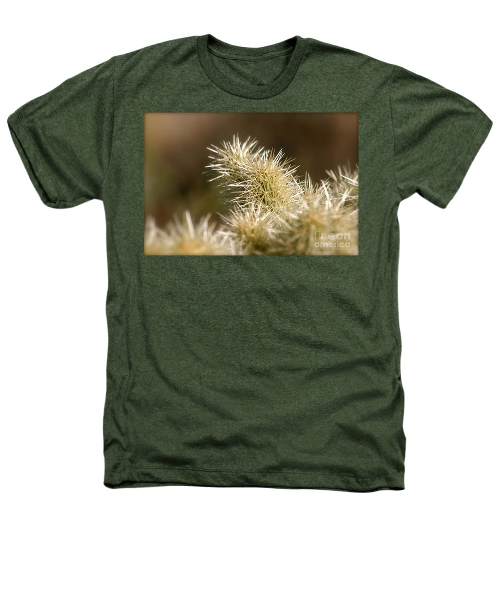 Cactus Heathers T-Shirt featuring the photograph Cacti by Nadine Rippelmeyer