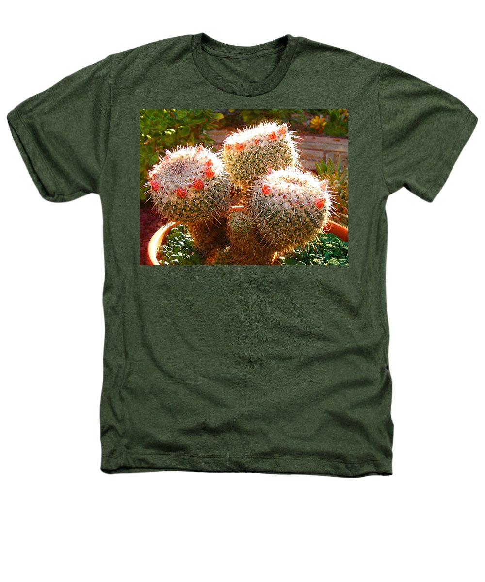 Landscape Heathers T-Shirt featuring the photograph Cactus Buds by Amy Vangsgard