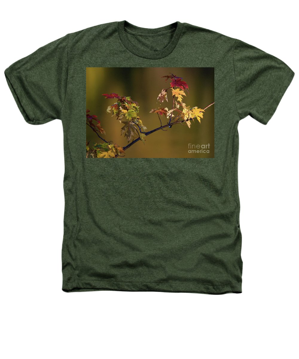 Fall Heathers T-Shirt featuring the photograph Color On A Stick by Robert Pearson