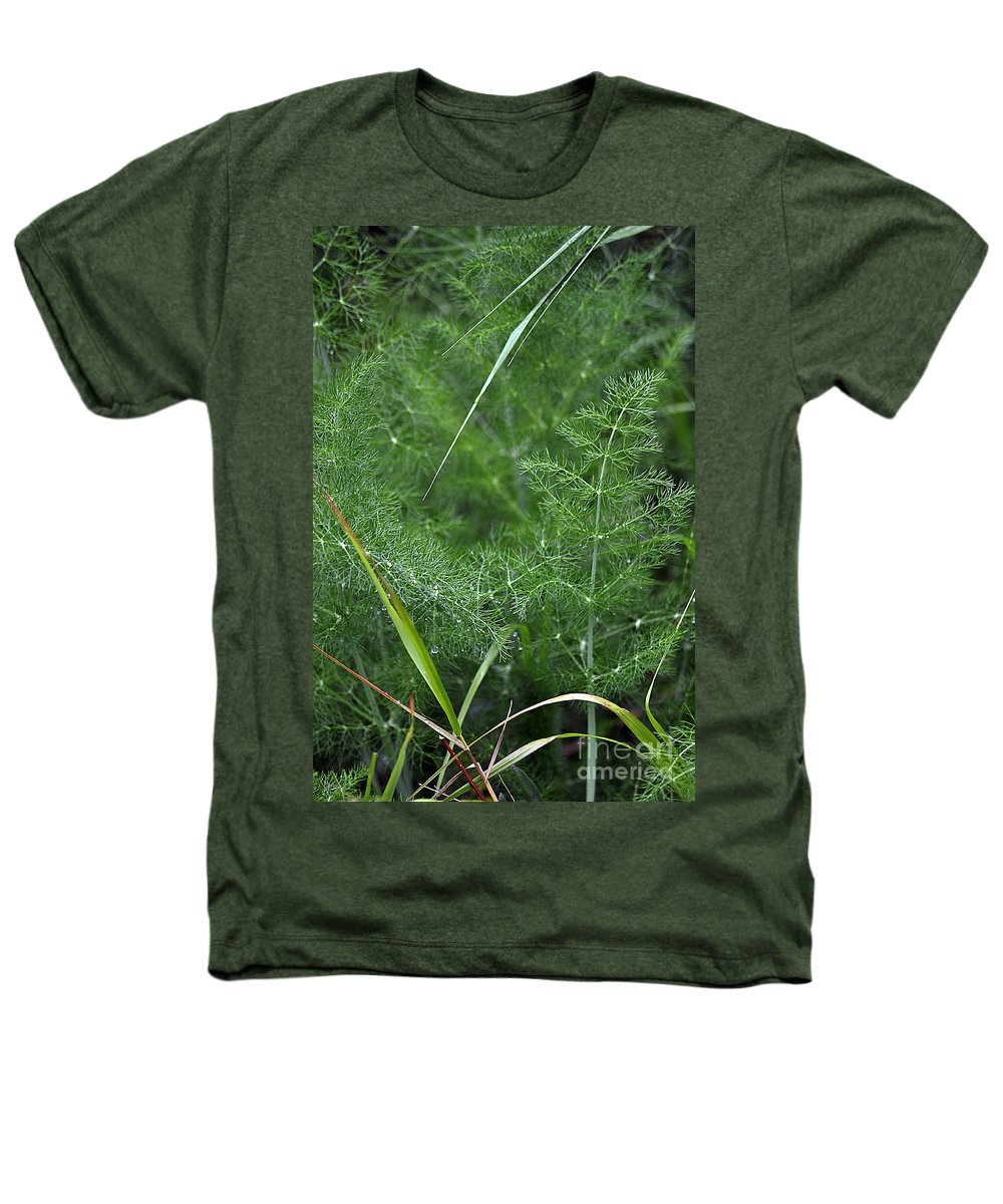 Clay Heathers T-Shirt featuring the photograph Dew On The Ferns by Clayton Bruster