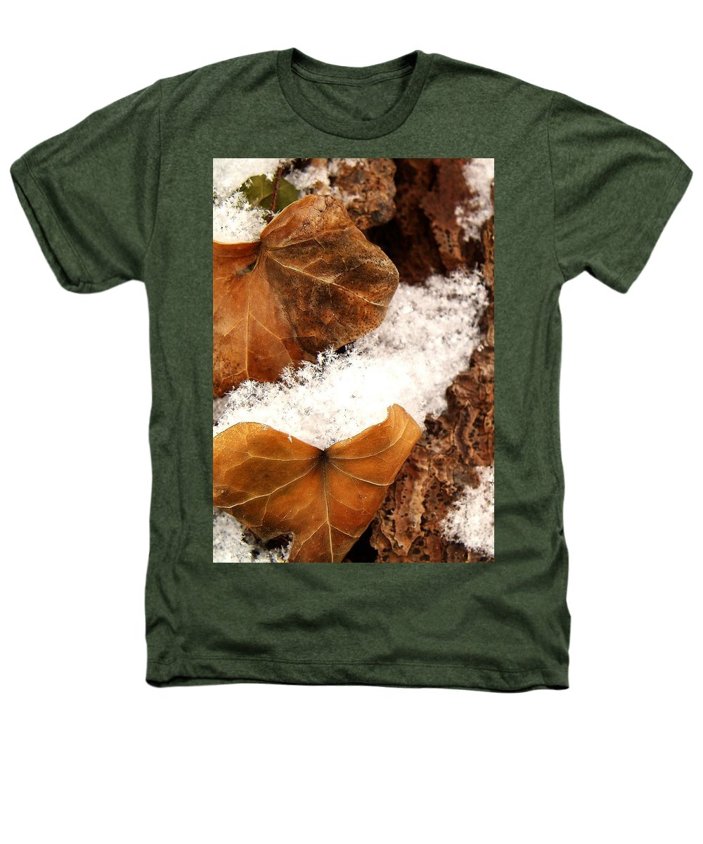 Fall Heathers T-Shirt featuring the photograph Fall And Winter by Gaby Swanson