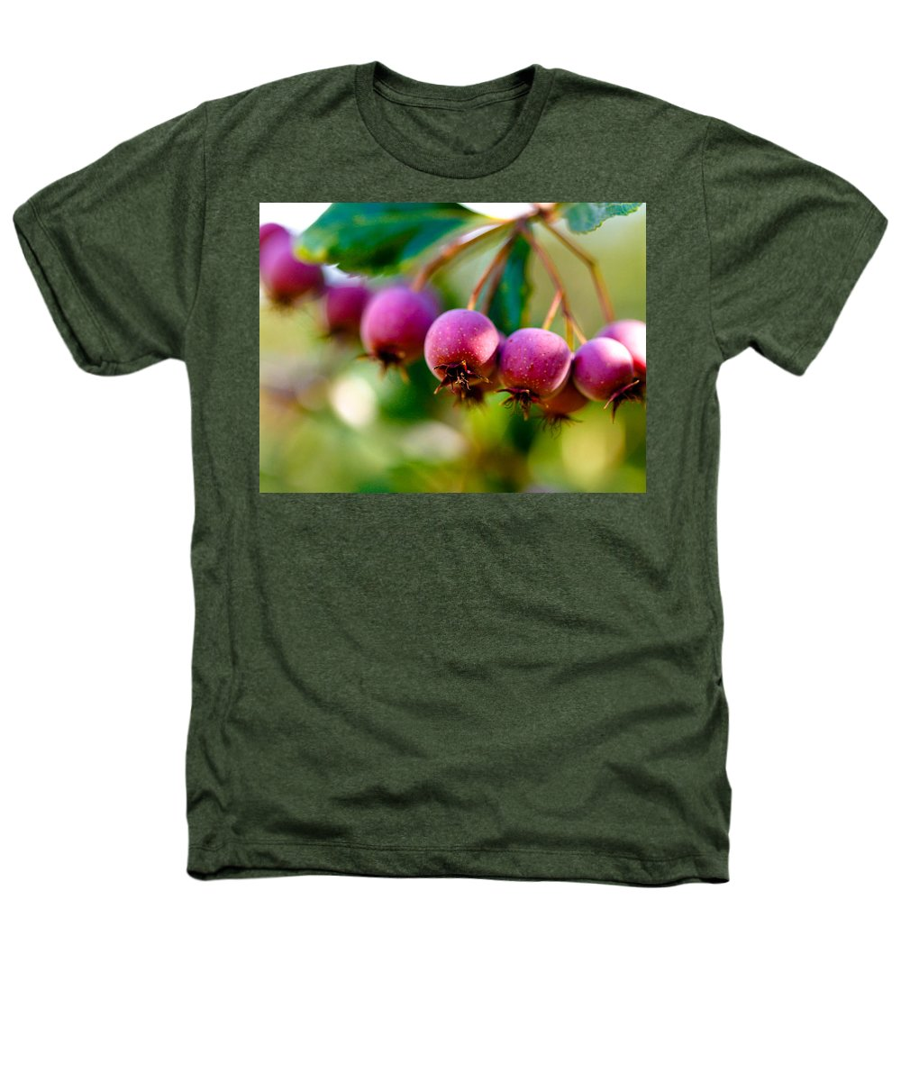 Berry Heathers T-Shirt featuring the photograph Fall Berries by Marilyn Hunt