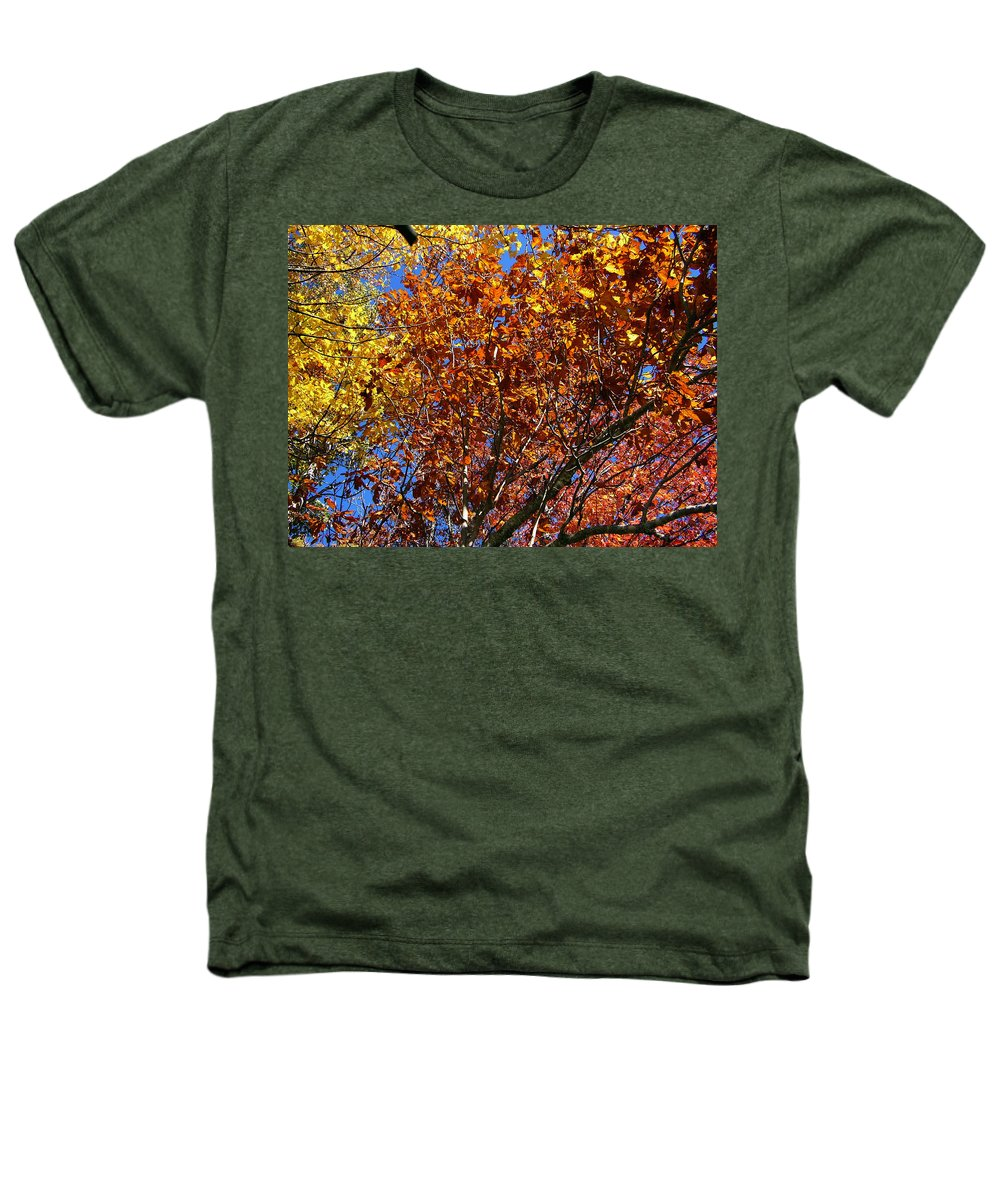Fall Heathers T-Shirt featuring the photograph Fall by Flavia Westerwelle