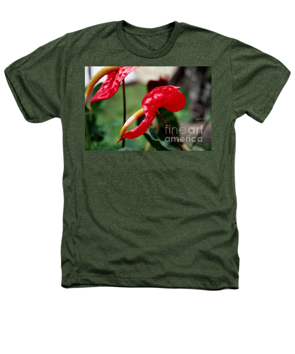 Exotic Flowers Heathers T-Shirt featuring the photograph Flamingo Flower by Kathy McClure