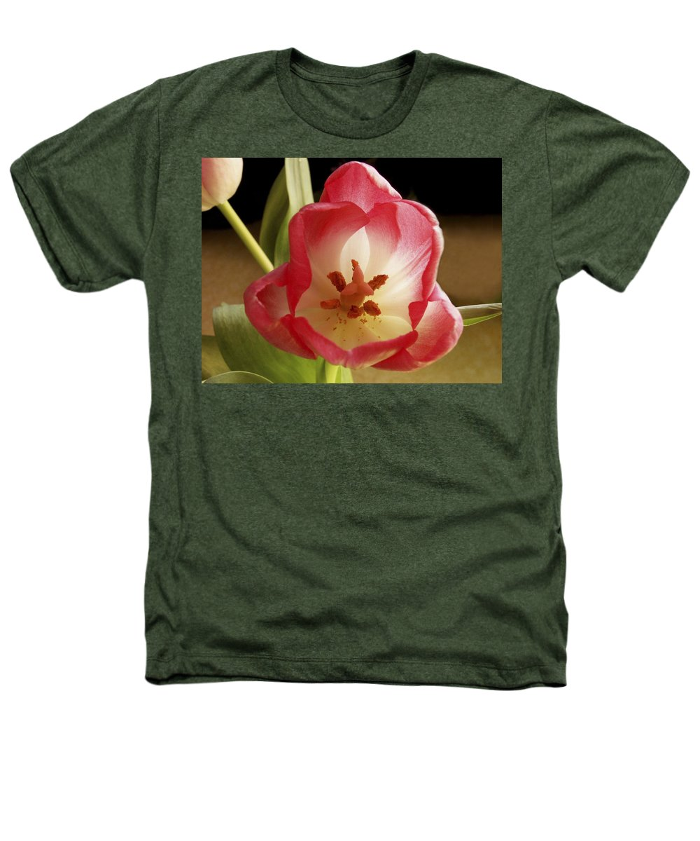 Flowers Heathers T-Shirt featuring the photograph Flower Tulip by Nancy Griswold