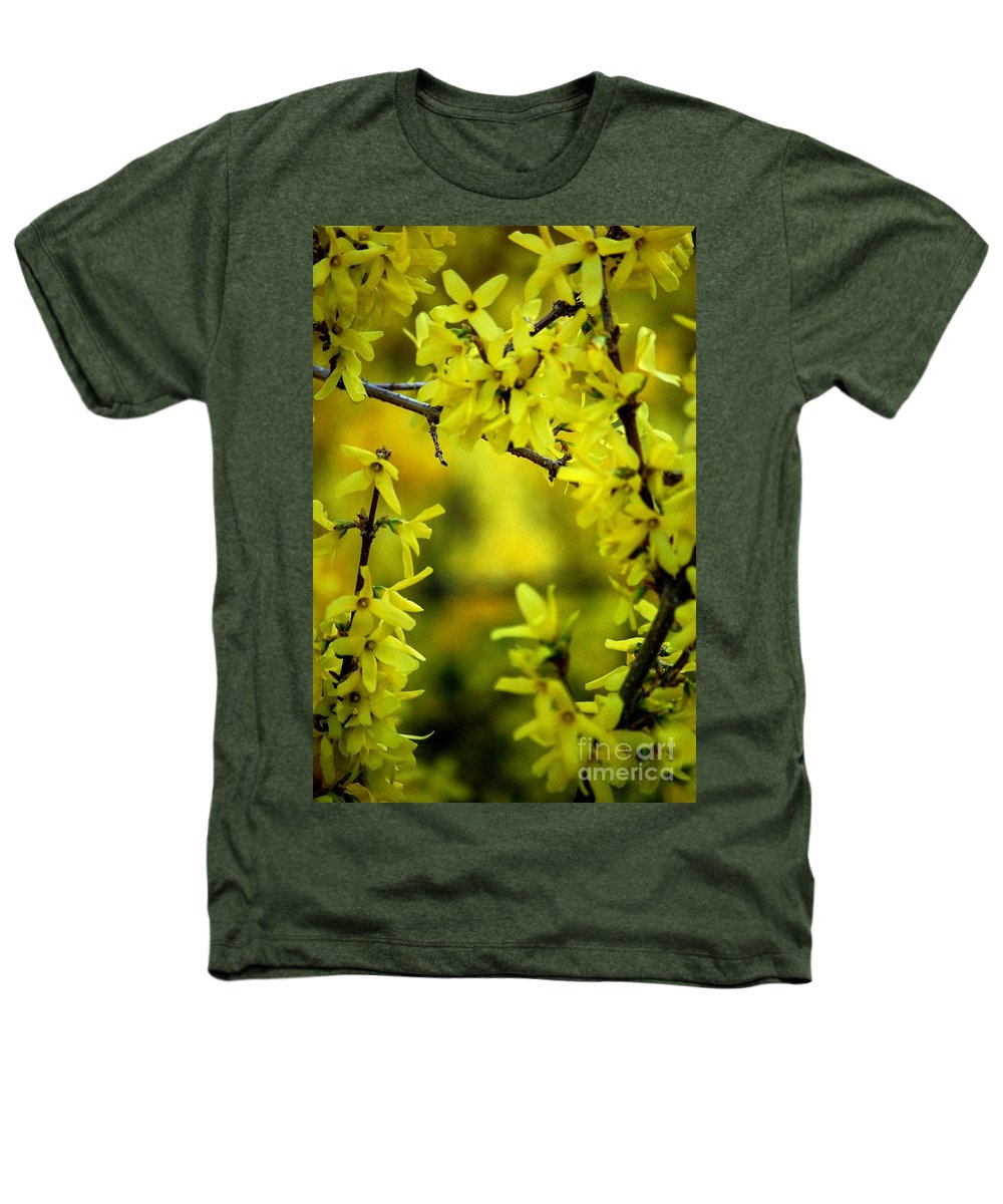 Spring Heathers T-Shirt featuring the photograph Forsythia At The Hacienda by David Lane