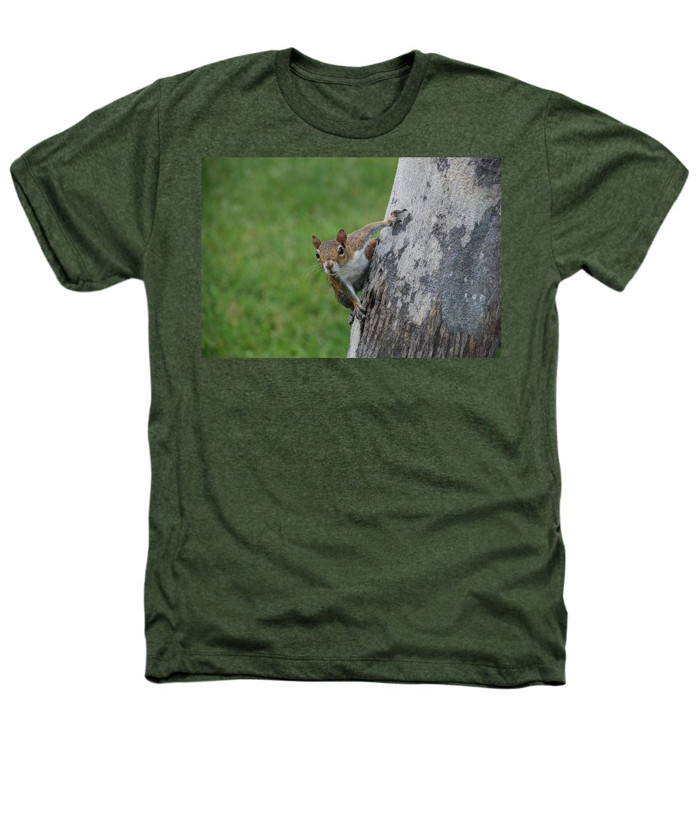 Squirrel Heathers T-Shirt featuring the photograph Hanging On by Rob Hans
