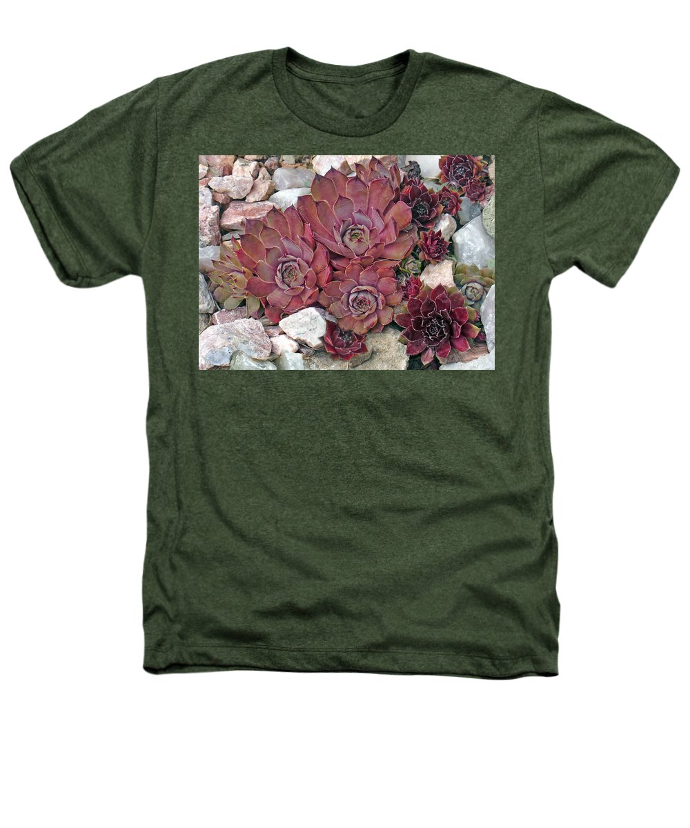 Landscape Heathers T-Shirt featuring the photograph Hens And Chickens by Steve Karol