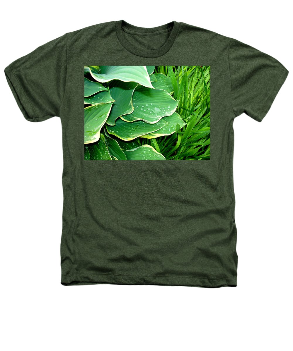 Hostas Heathers T-Shirt featuring the photograph Hosta Leaves And Waterdrops by Nancy Mueller