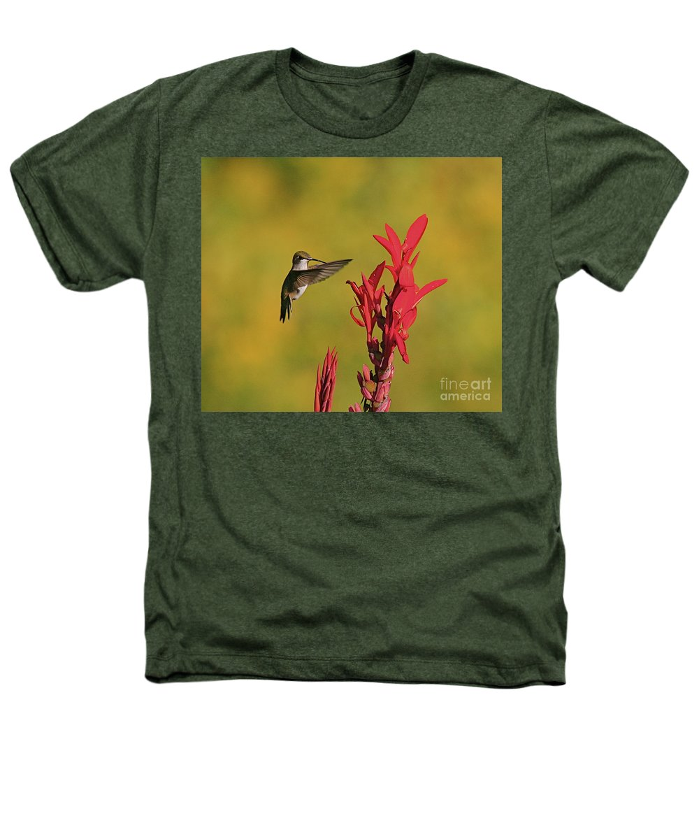 Humming Bird Heathers T-Shirt featuring the photograph Hummer by Robert Pearson