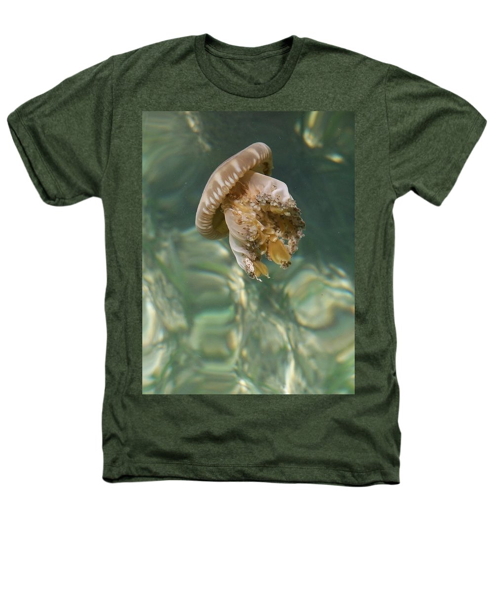 Jelly Heathers T-Shirt featuring the photograph Jelly Belly by Gale Cochran-Smith