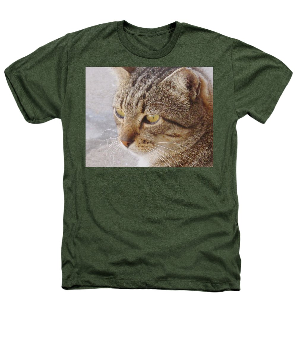Cat Heathers T-Shirt featuring the photograph King Cat by Ian MacDonald