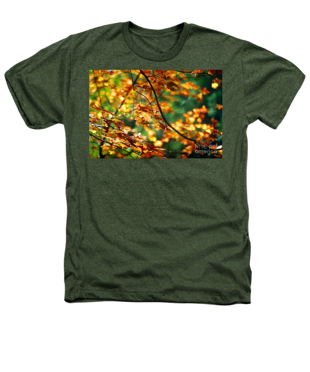 Fall Color Heathers T-Shirt featuring the photograph Lost In Leaves by Kathy McClure