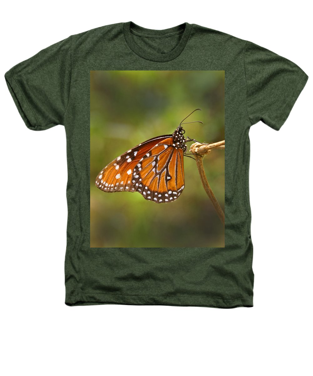 Monarch Heathers T-Shirt featuring the photograph Monarch Butterfly by Heather Coen
