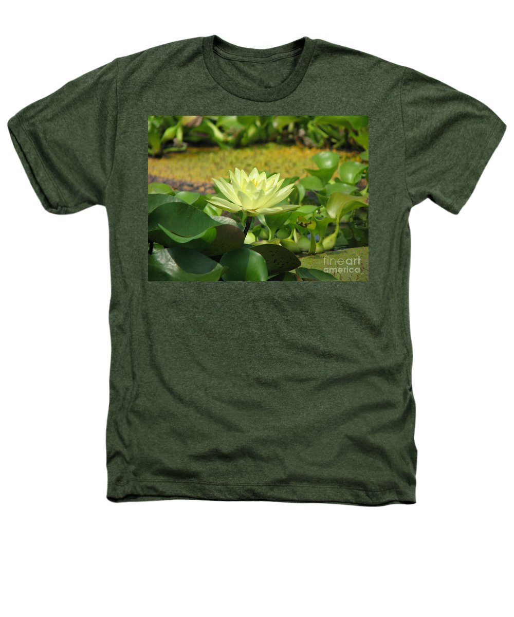 Nature Heathers T-Shirt featuring the photograph Nature by Amanda Barcon