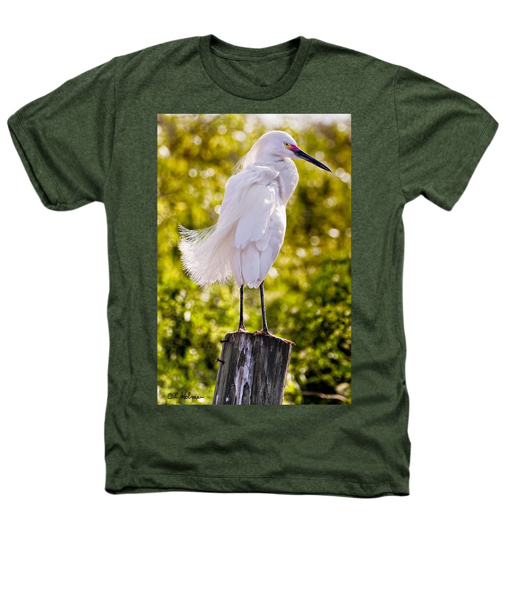 snowy Egret Heathers T-Shirt featuring the photograph On Watch by Christopher Holmes