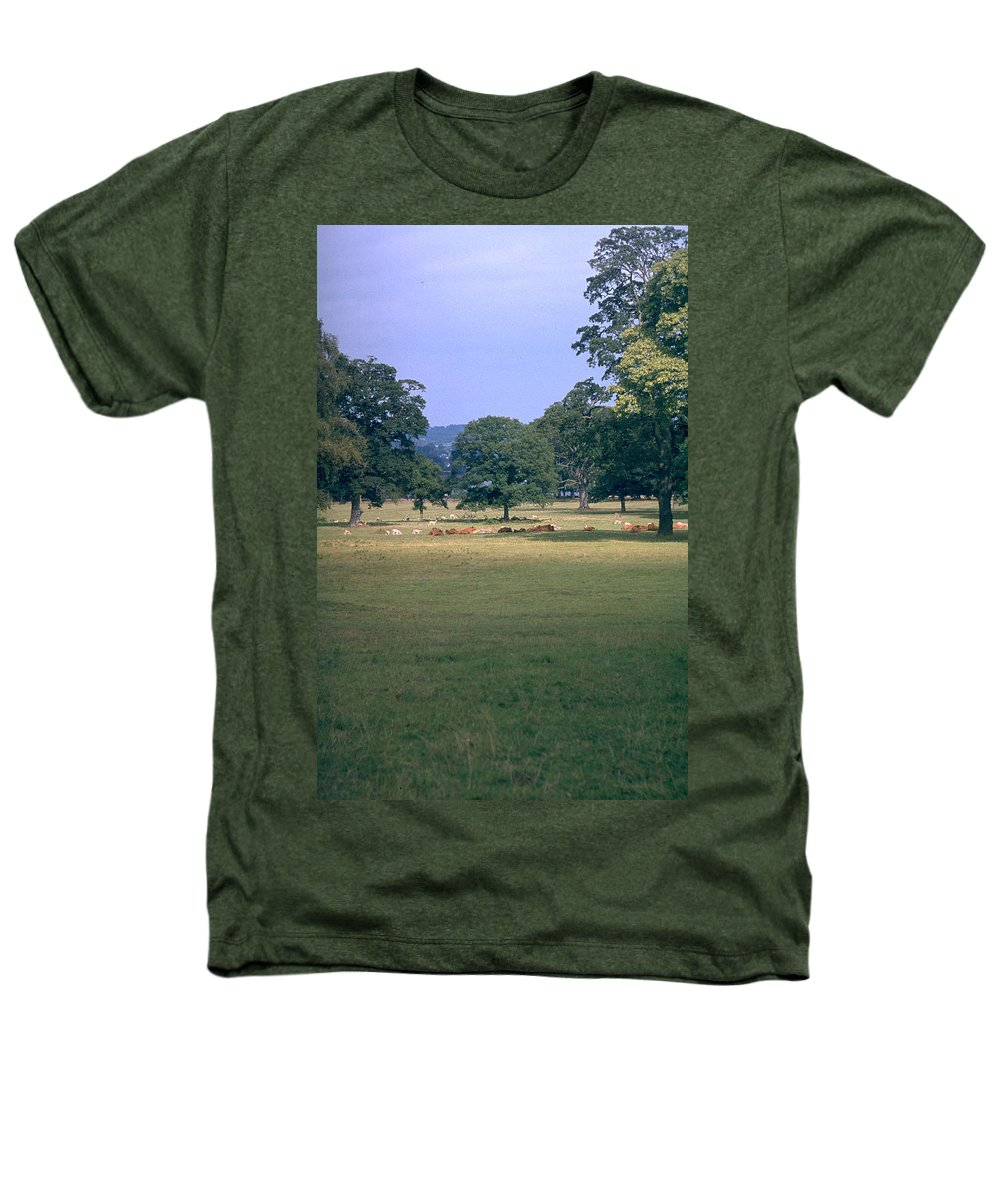 Great Britain Heathers T-Shirt featuring the photograph Pasture by Flavia Westerwelle